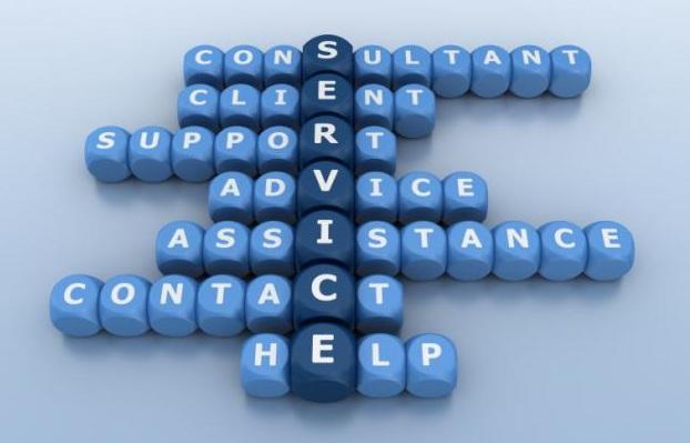 Servizi di consulenza SF Business Advisor - dadi