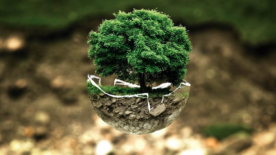 La norma ISO 14001 è un sistema di gestione che pone grande attenzione alla protezione dell'ambiente.