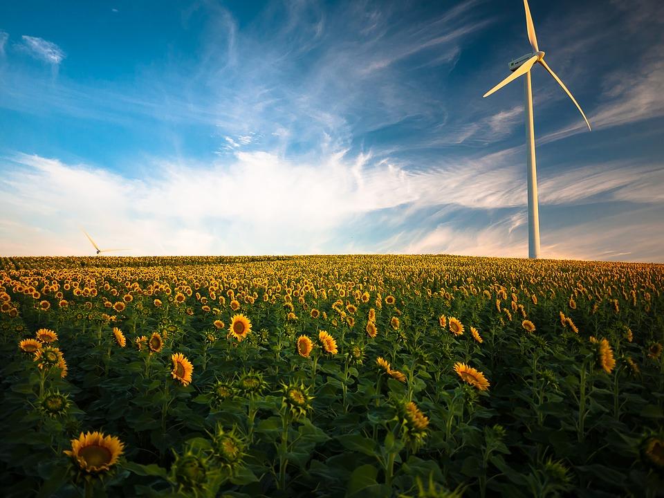 La norma ISO 50001:2018 è il nuovo standard di riferimento che identifica i requisiti di un Sistema di Gestione dell'Energia applicabile a tutte le organizzazioni indipendentemente dalle loro dimensioni, settori di appartenenza, prodotti e servizi offerti, inoltre è applicabile a prescindere dal tipo, uso e quantità di energia consumata.