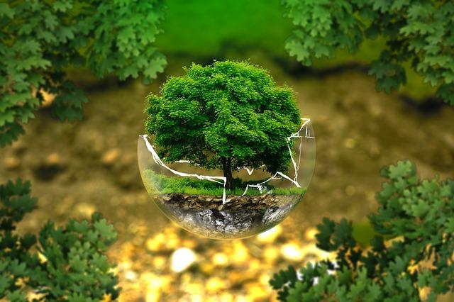 La ISO 14001:2015 è una norma internazionale standard al cui interno sono indicati i requisiti del Sistema di Gestione Ambientale applicabile a qualsiasi tipo di organizzazione e tipologia di impresa.