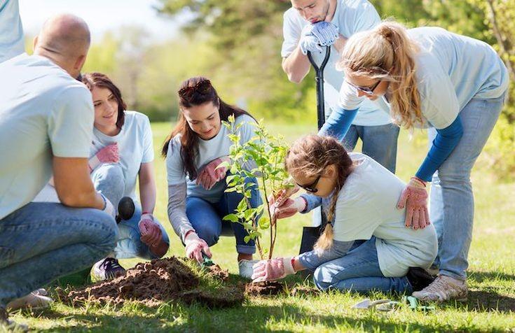 La certificazione SA 8000 (Social Accountability – Responsabilità Sociale) identifica lo standard internazionale di certificazione dedicato agli aspetti di responsabilità sociale che emergono nella gestione d'Impresa.